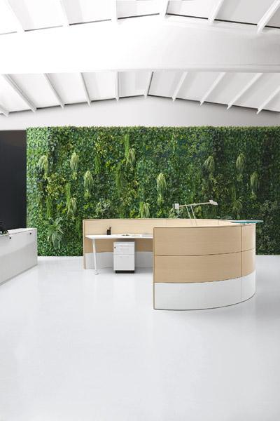 Arredi recepion ufficio mobili banconi reception ufficio for Arredamento ufficio design